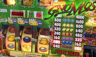 ¿Cómo jugar a la slot Gnomos con dinero real?